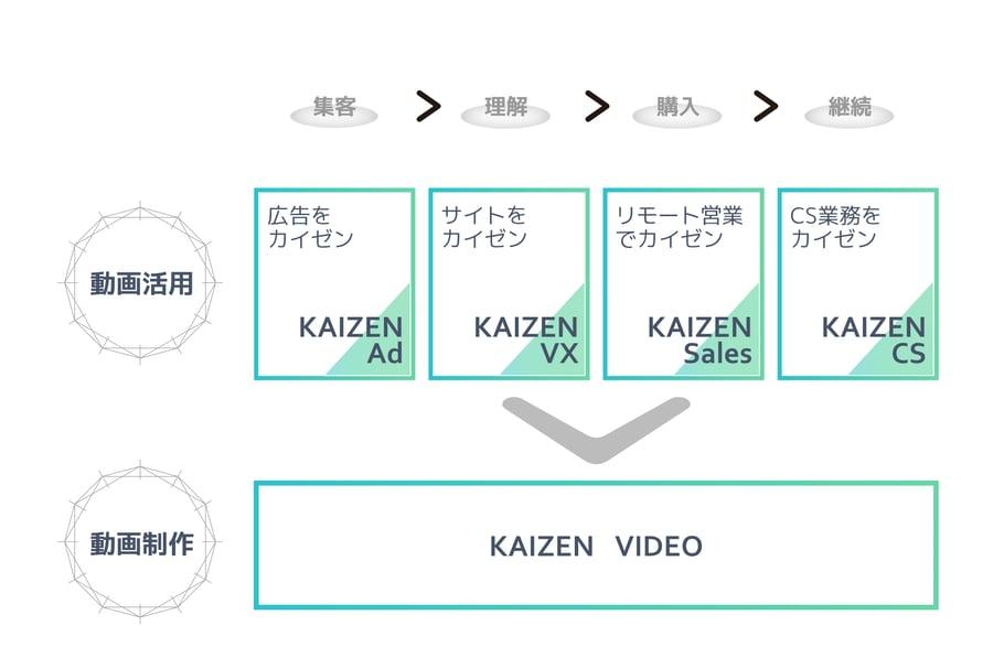 VIDEOservice_solution